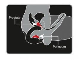 So wird die Prostata Massage richtig gemacht!