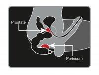 Vorschau: Prostata MassageBig Boy - wirkungsvoller Prostata-Vibrator