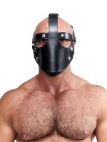 Vorschau: Mister B Leather Face Muzzle Harness